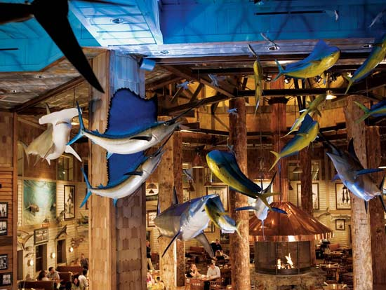 Denver co sporting goods outdoor stores bass pro shops for Bass pro shop fishing